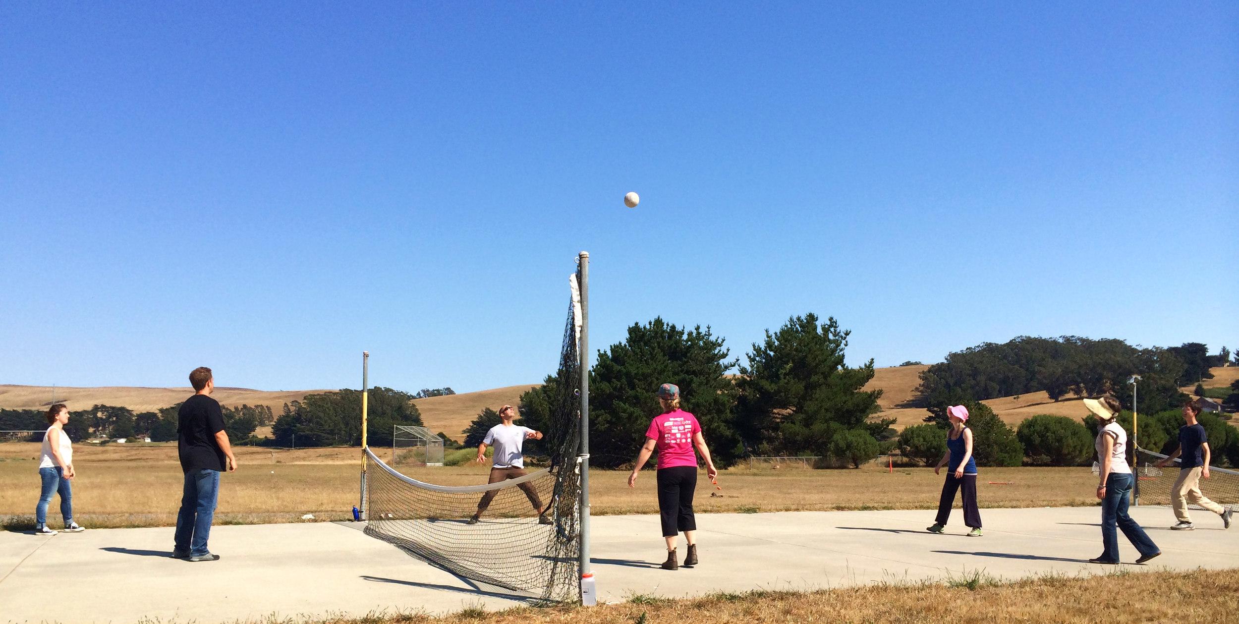 YA-Volleyball
