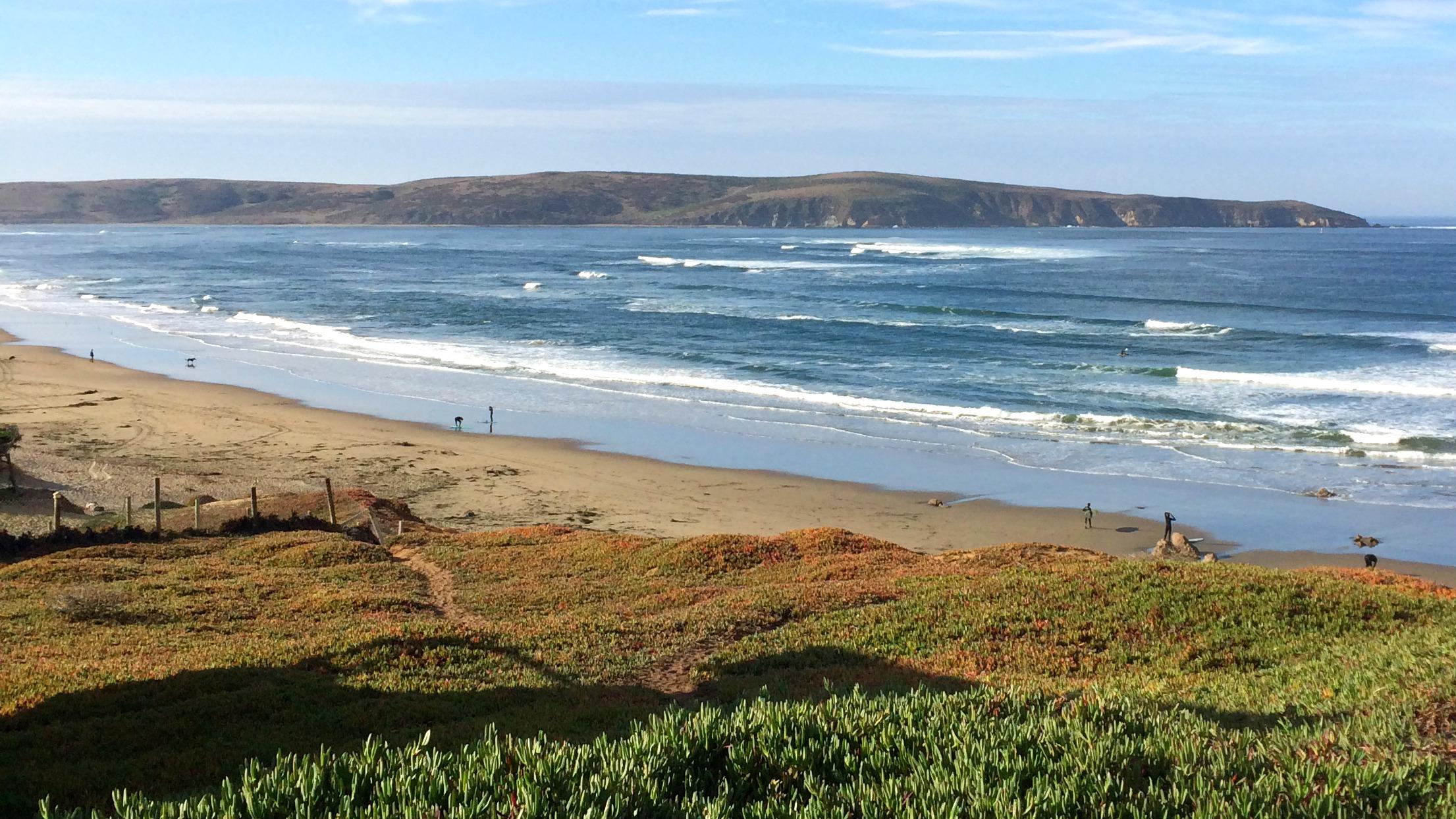 YA-Cohort-Dillon-Beach