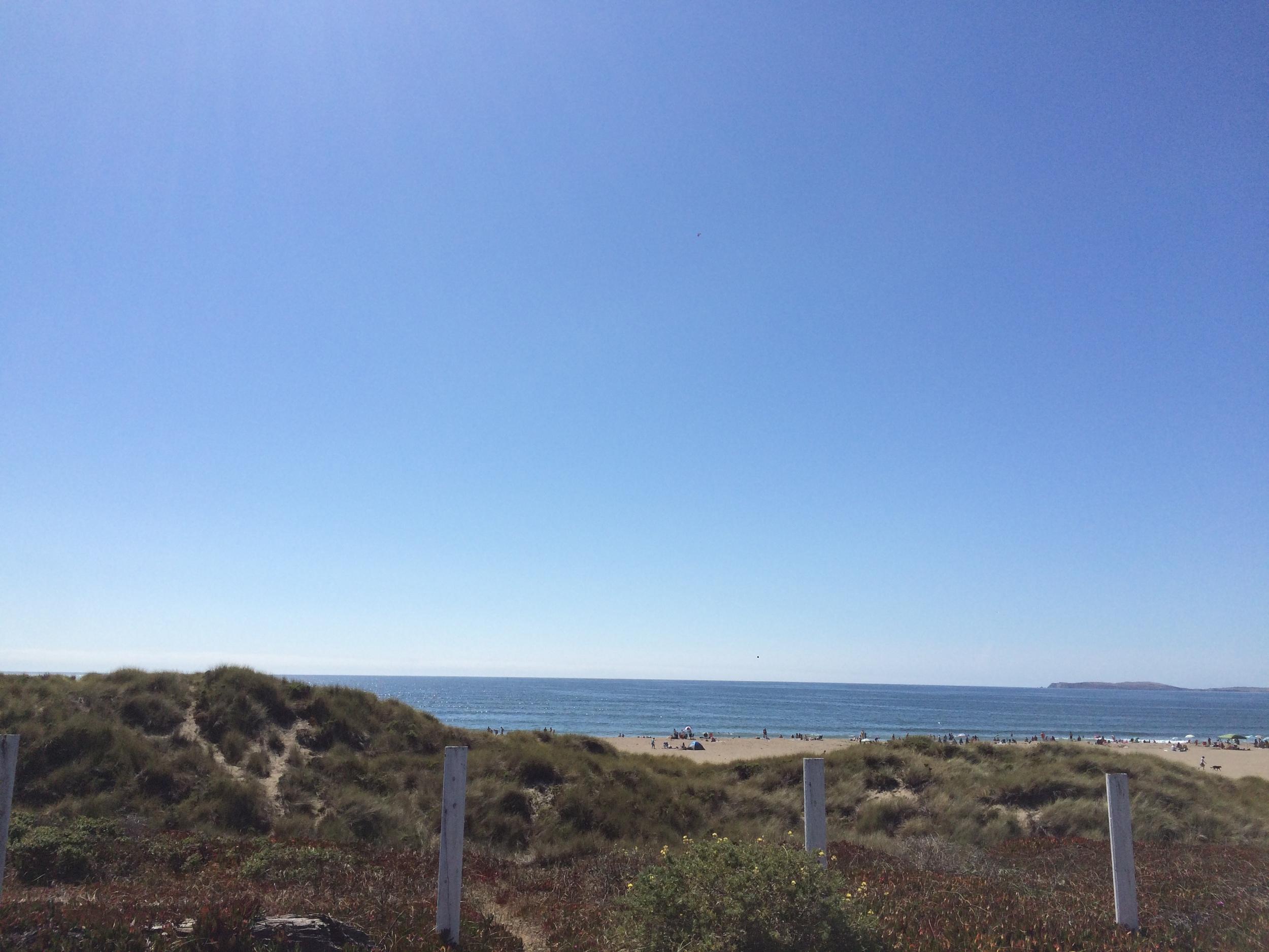 YA-Dillon-Beach