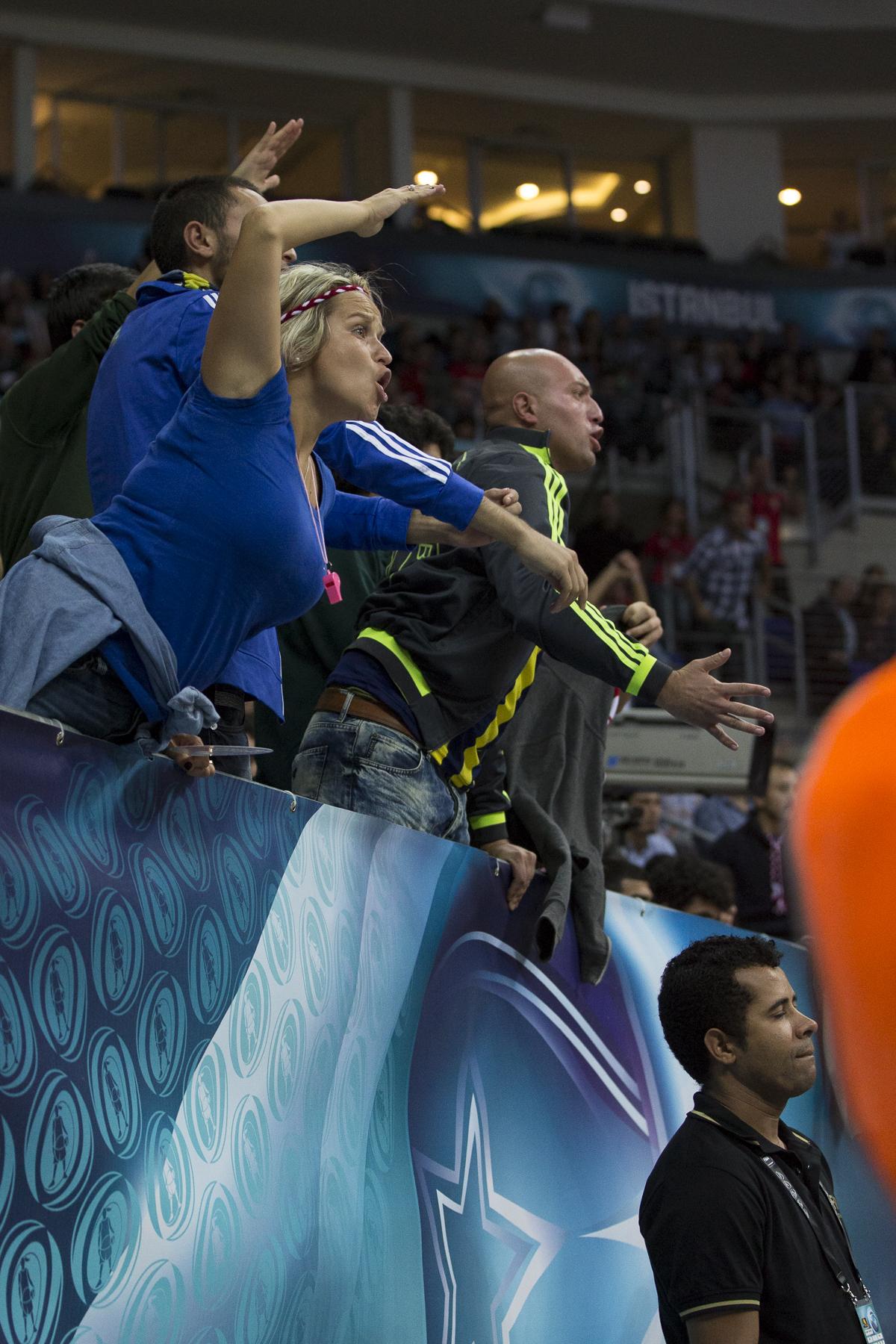 Turkey Fans-1.jpg