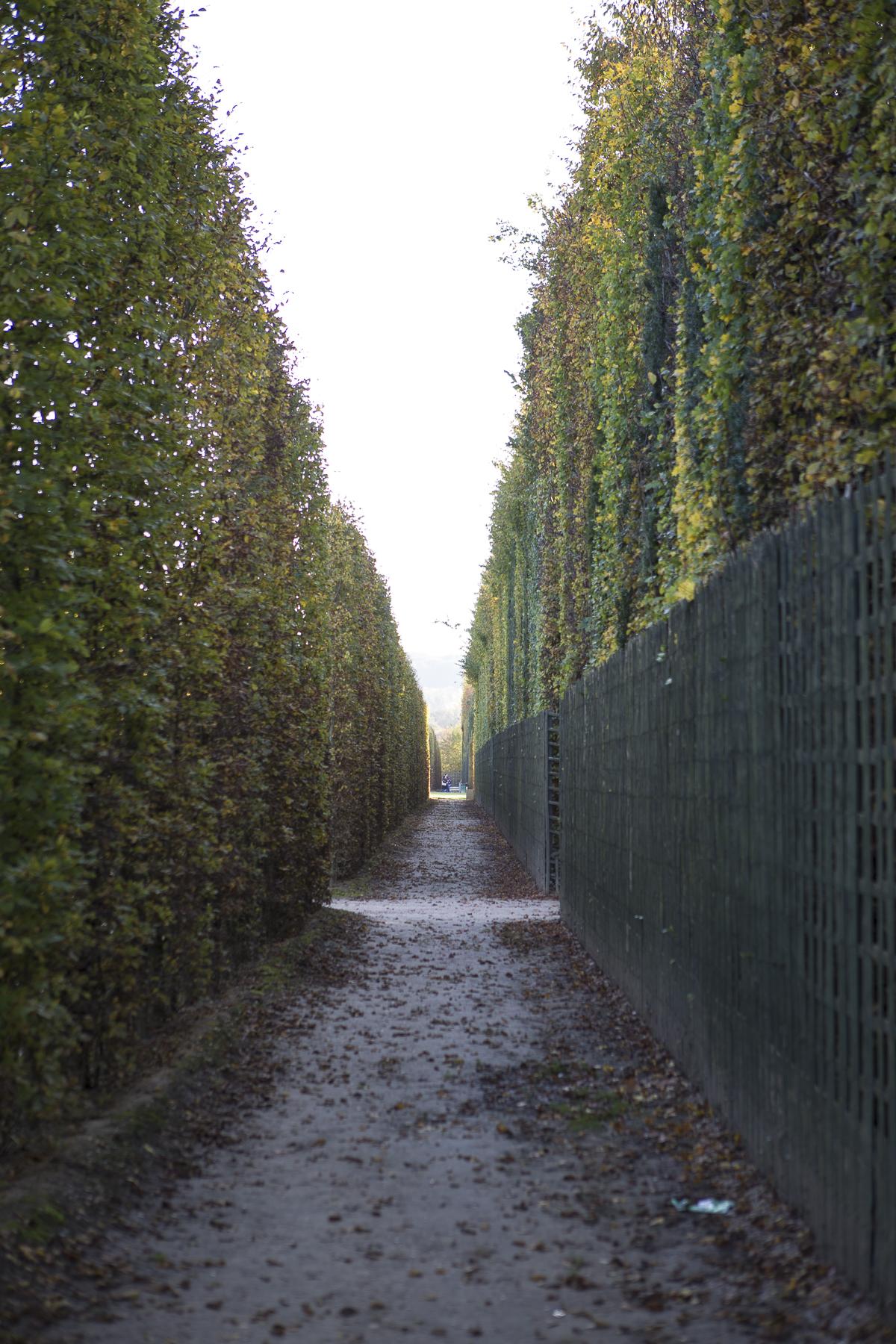 Gardens of Versailles-22.jpg