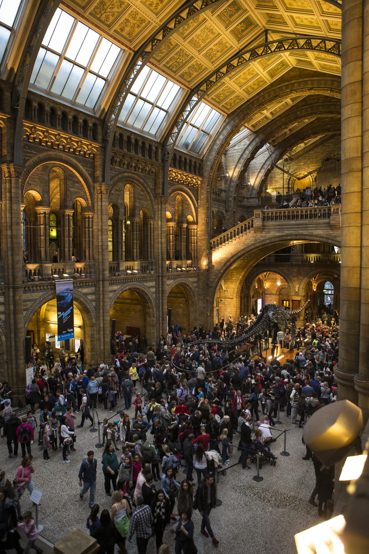 London Walk and Natural History Museum-21.jpg