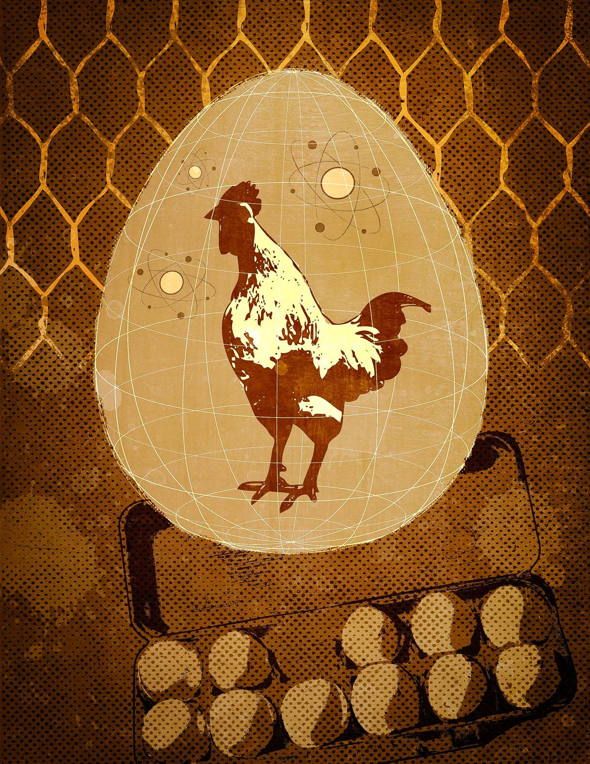chicken-egg-2.jpg