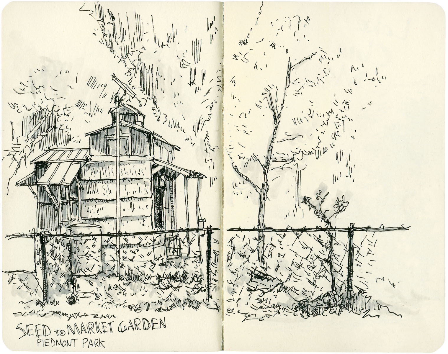 Sketchbook: Seed to Market Garden