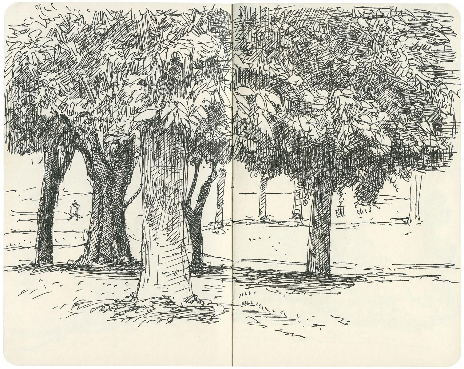 Sketchbook: Park Trees