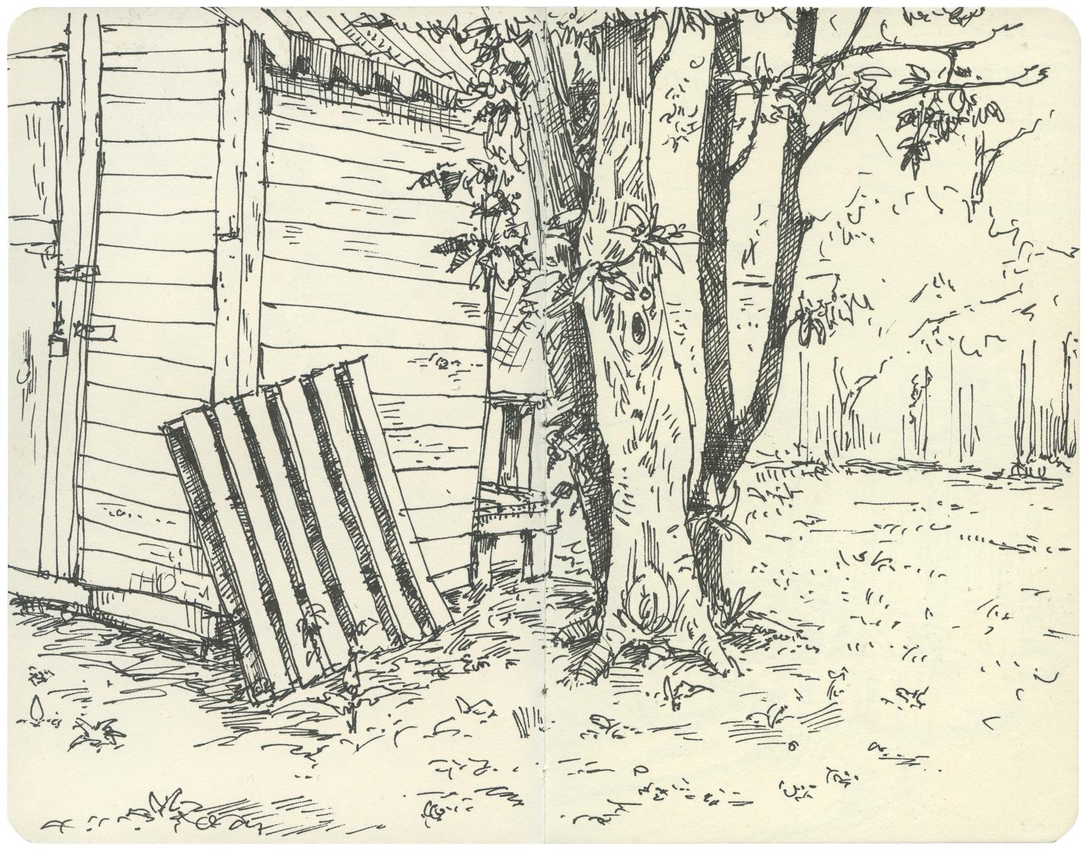 Sketchbook: Backyard Shed