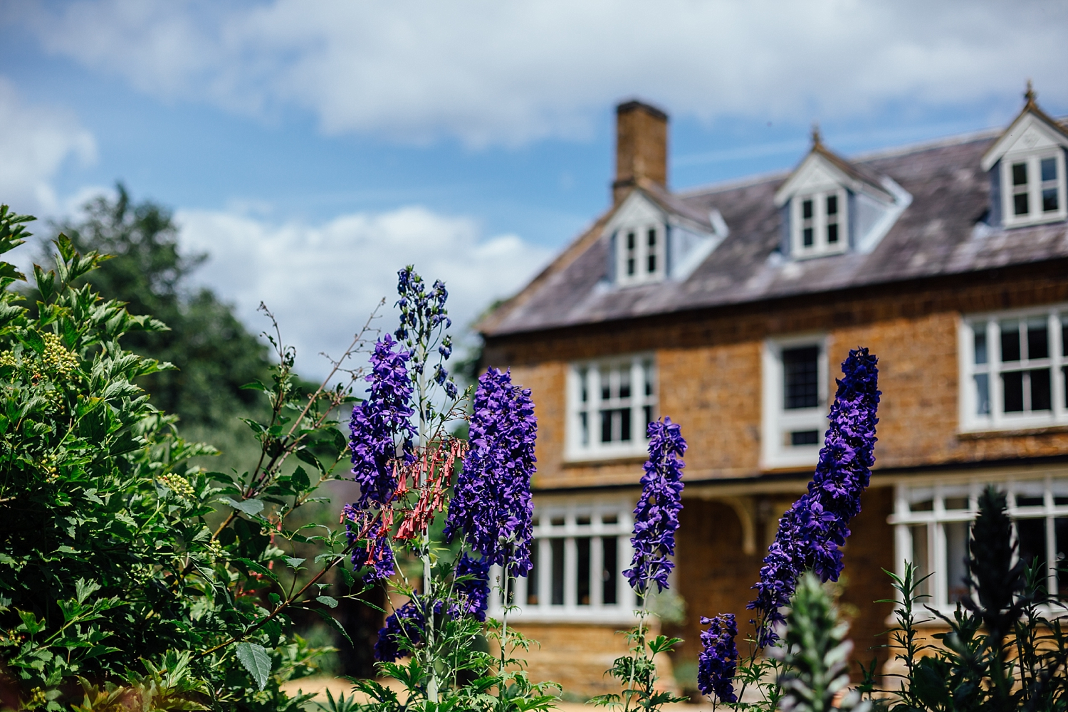 alexvictor-blog-natural-fun-relaxed-documentary-charlotte-jopling-wedding-photography-northamptonshire-home-garden-country-summer-2.jpg