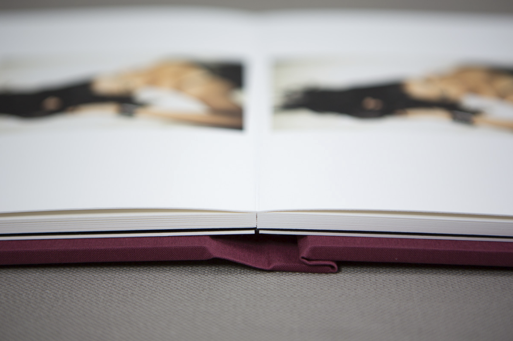Fine-art-wedding-albums-charlotte-jopling-photography-2.png