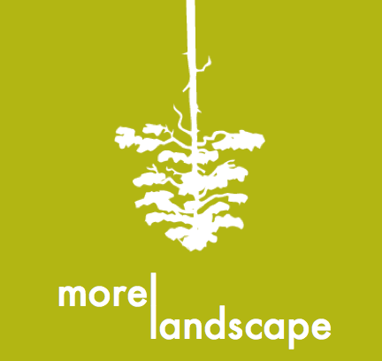 Morel Landscape Logo Square.png