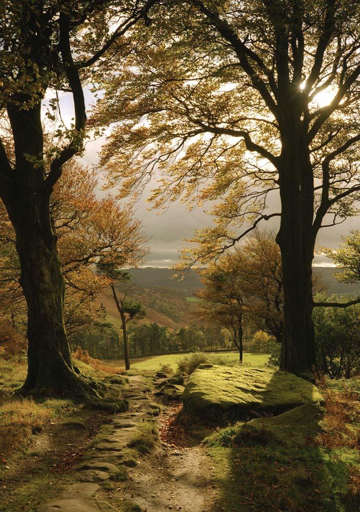 Autumn Grindleford