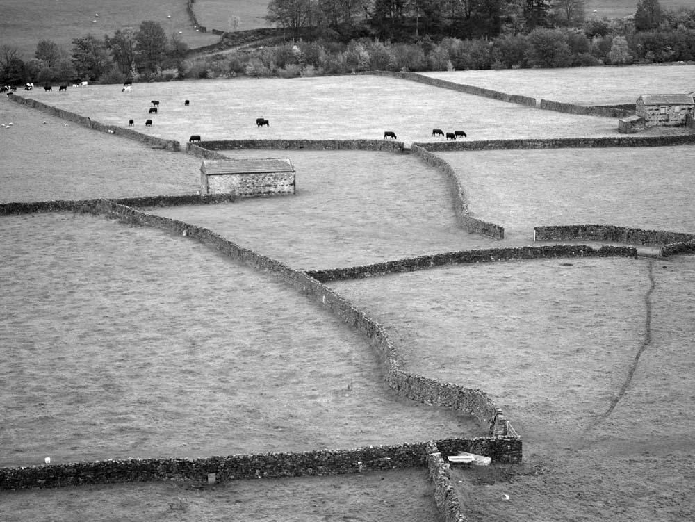 Swaledale Yorkshire Dales