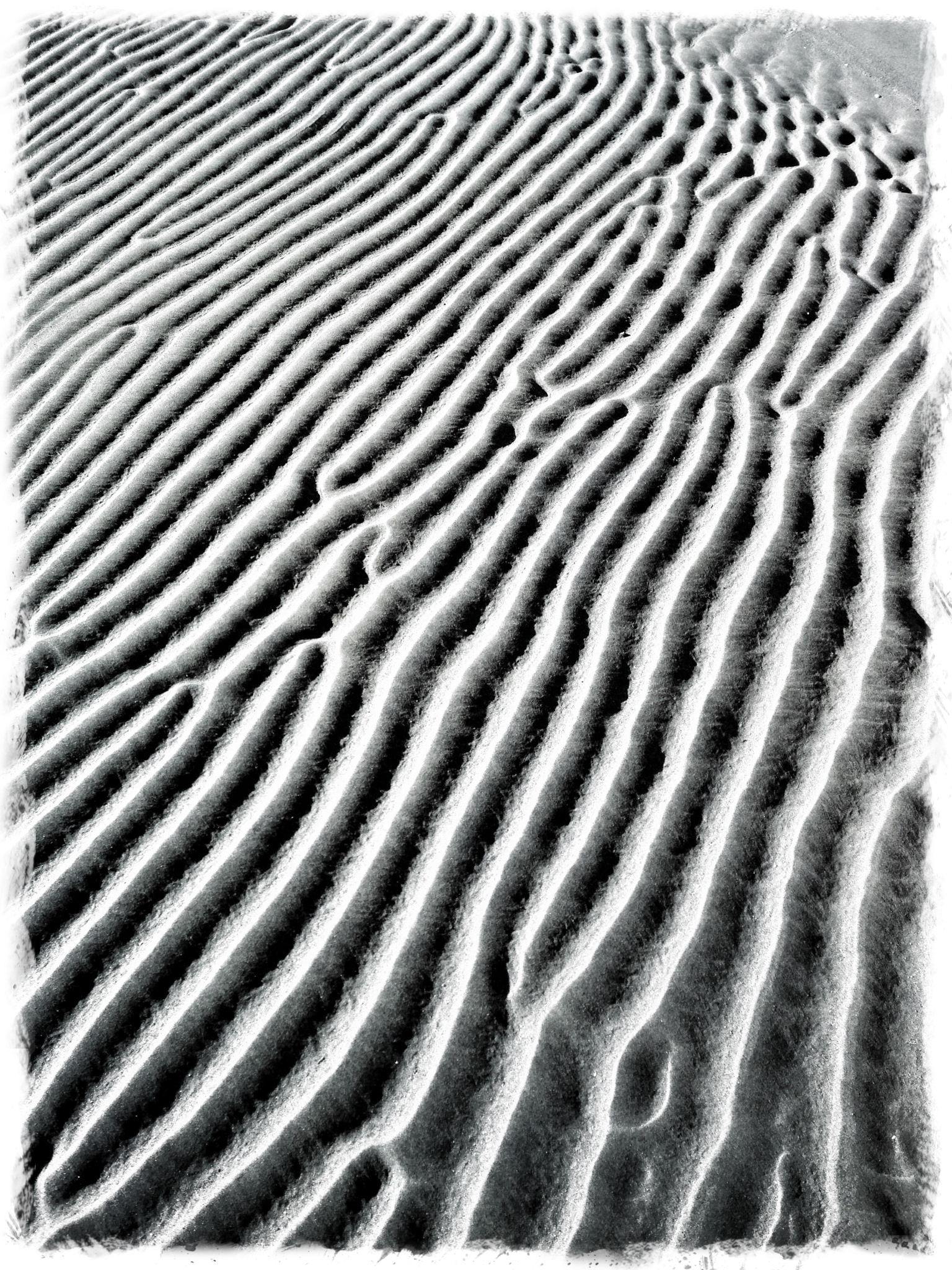Ripples in Sand, Wester ross