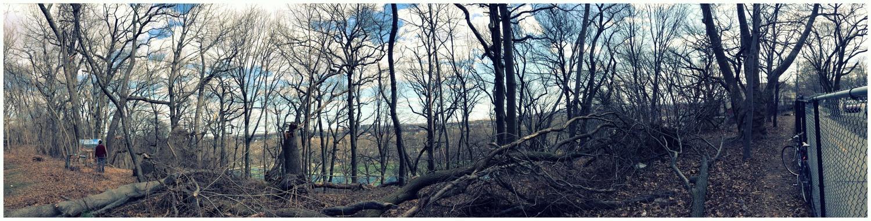 Panorama02-04-13.jpg