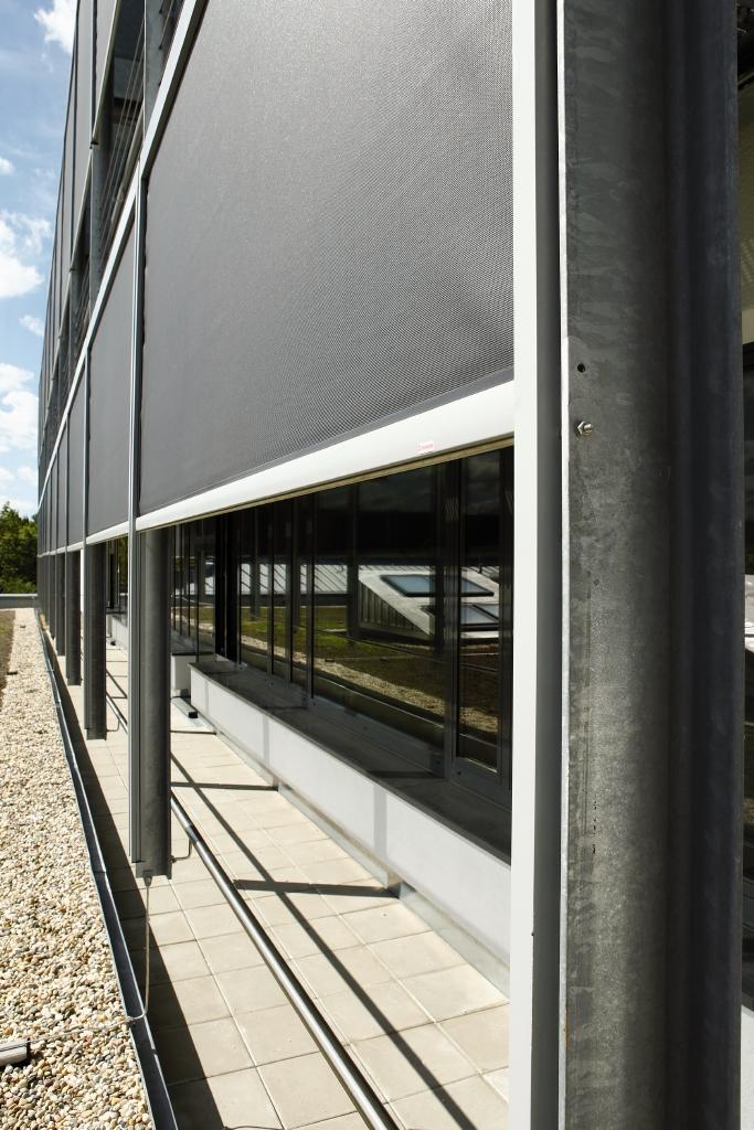 Ostendorfer_Gymnasium_25.jpg