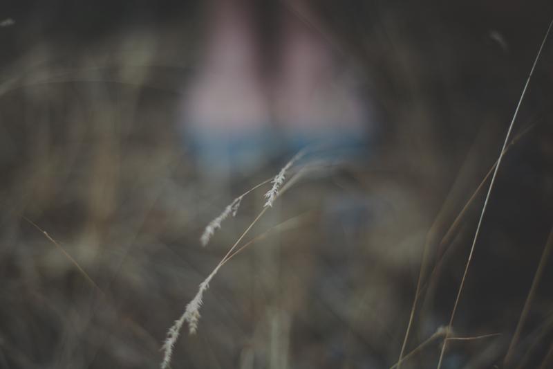 Gretchen_Gause_Photography-0097.jpg