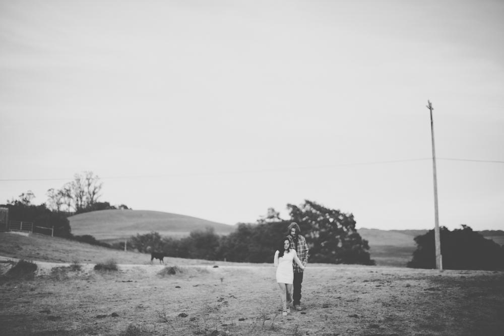 Gretchen_Gause_Photo_Wine_Country_Wedding-0103.jpg