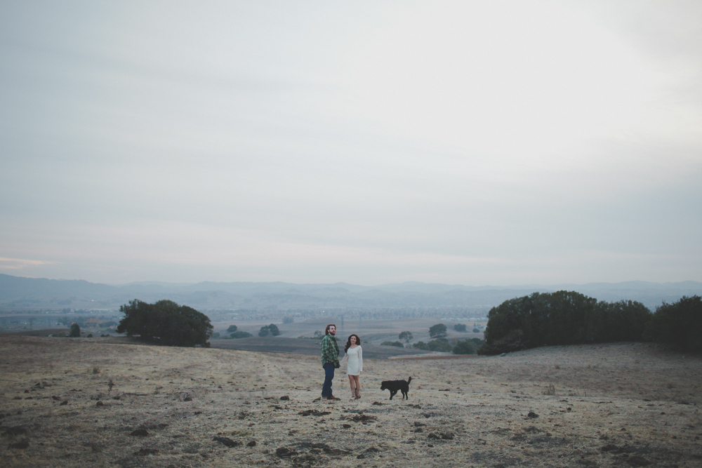 Gretchen_Gause_Photo_Wine_Country_Wedding-0231.jpg