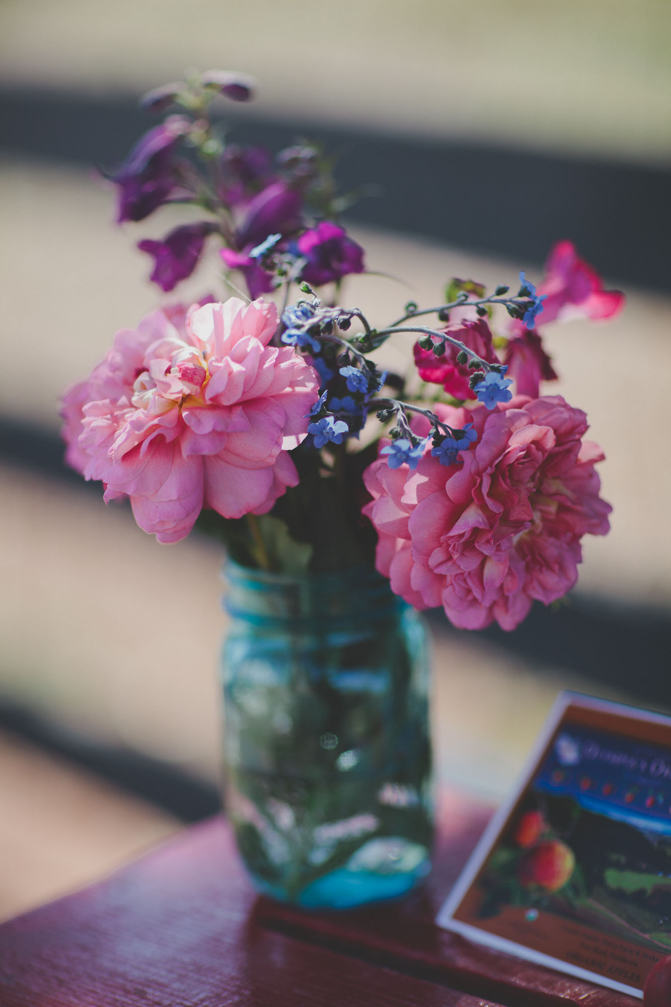 Gretchen_Gause_Petaluma_Olympias_Valley_Wedding_Photo-001.jpg