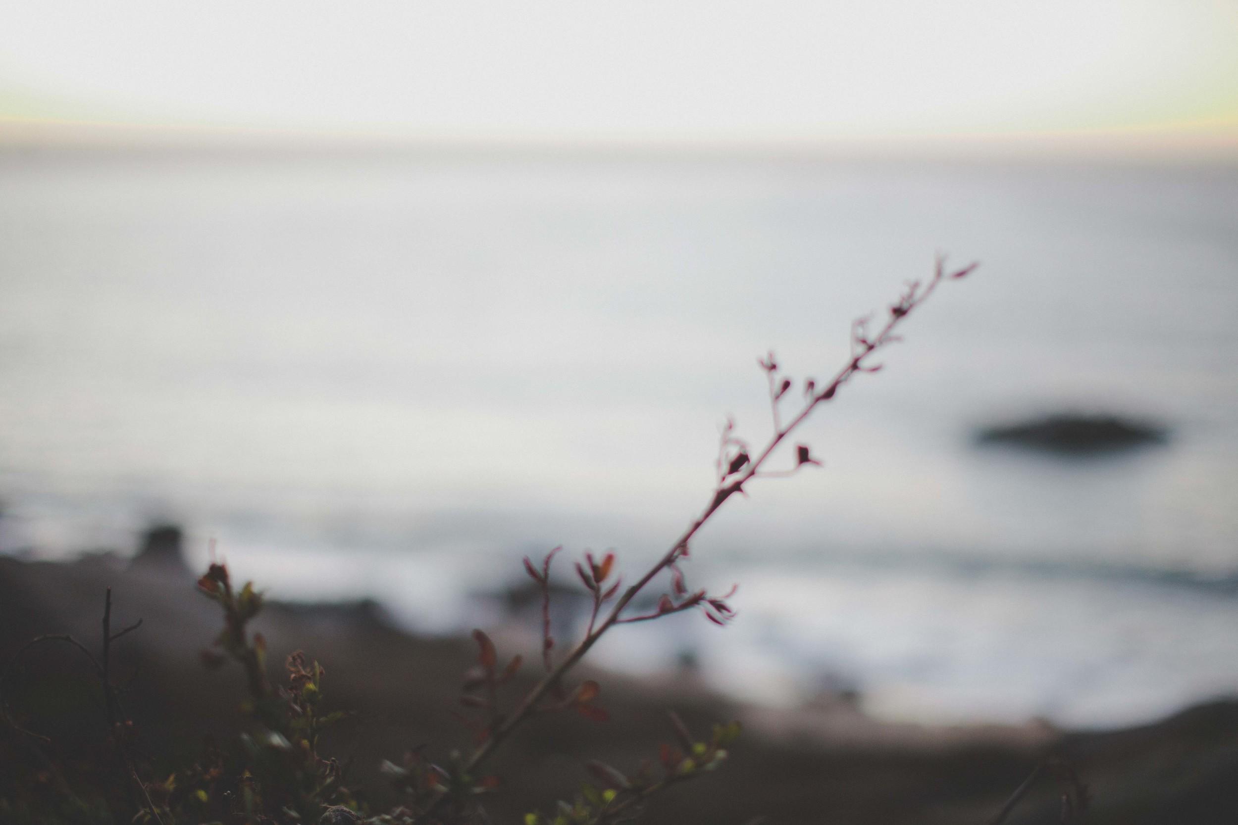 Gretchen_Gause_Photography-0303.jpg