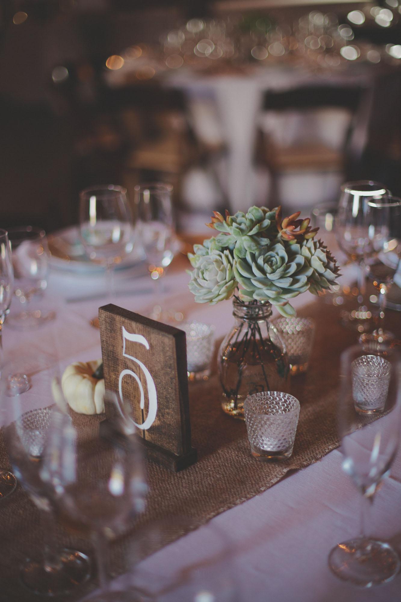 Gretchen_Gause_Petaluma_Olympias_Valley_Wedding_Photo-145.jpg