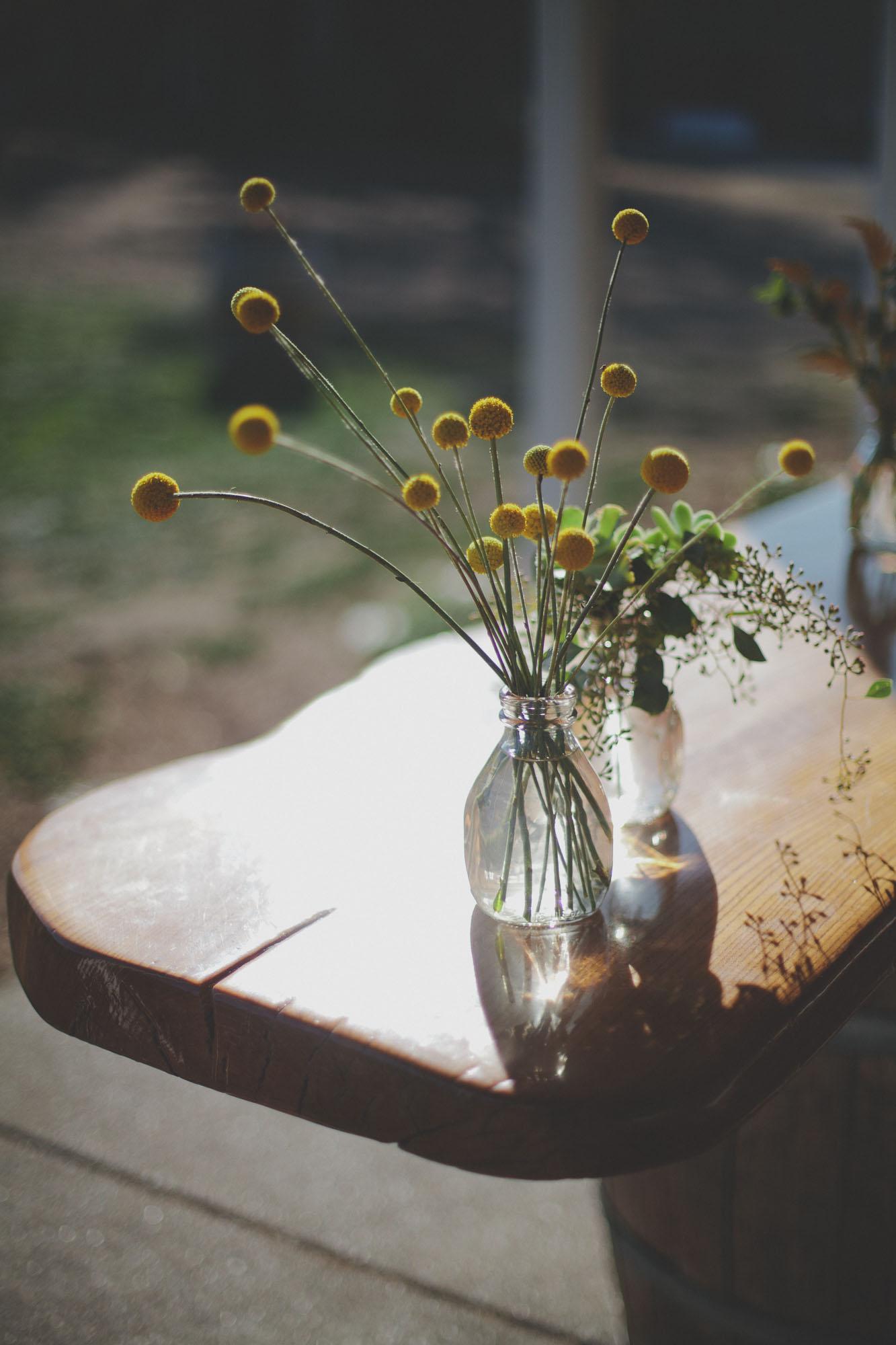 Gretchen_Gause_Petaluma_Olympias_Valley_Wedding_Photo-136.jpg