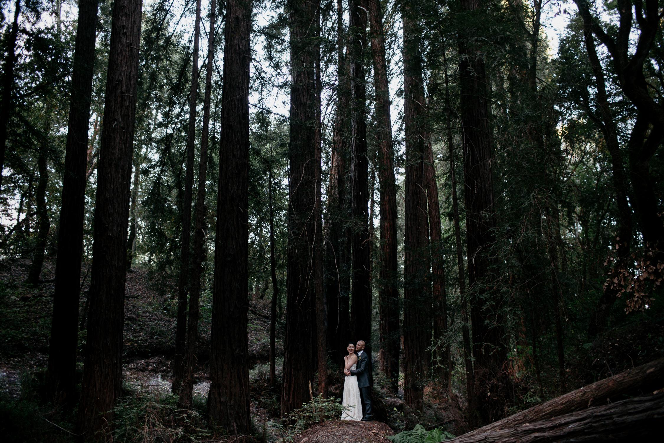 gretchen_gause_sonoma_california_wedding_photo_028.jpg