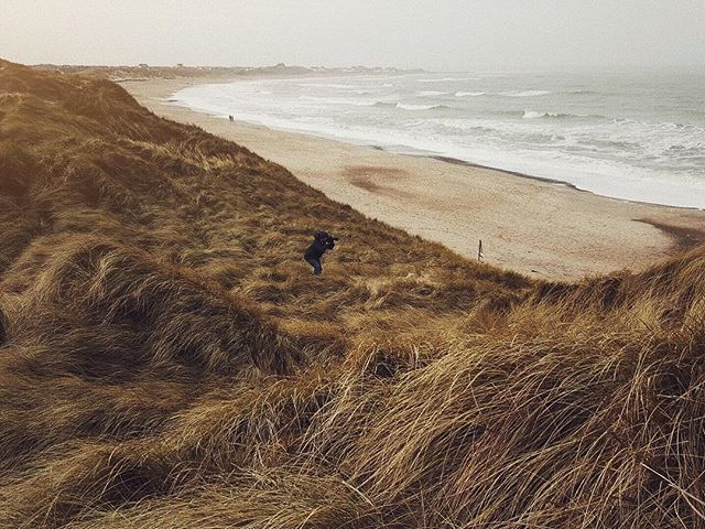 Silent like a ninja. Out stalking the perfect image of... a beach... blending in with the natual habitat.. striking the perfect pose. #coldhawaii #klitmøller #landscape_love #landscapehunter #surfers #nikonphotography #beachbody #ninja #surfermag #lickyourlife ..perfect📸:@mlerkenfeld
