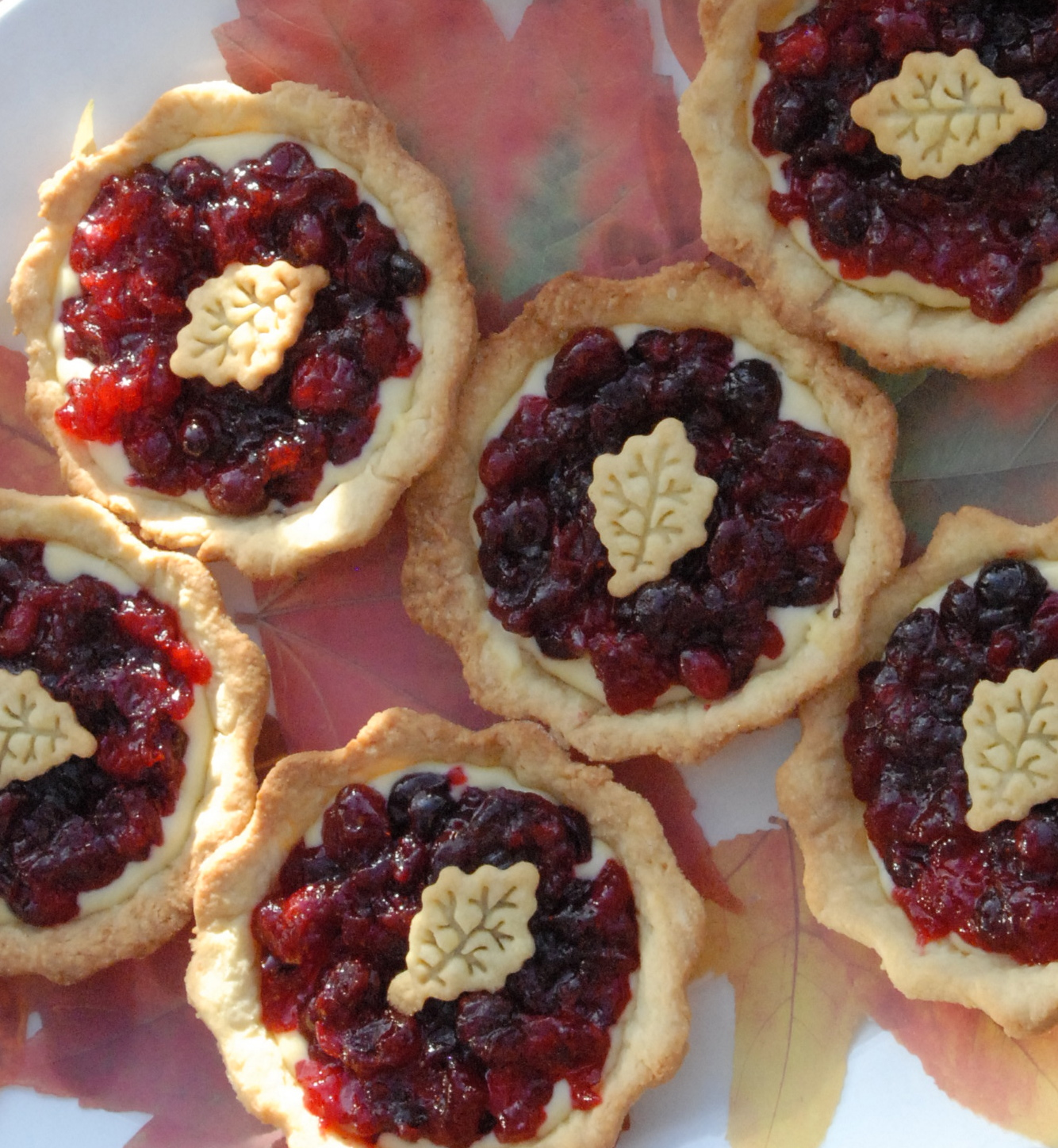 Cranberry Chocolate Rum Tarts
