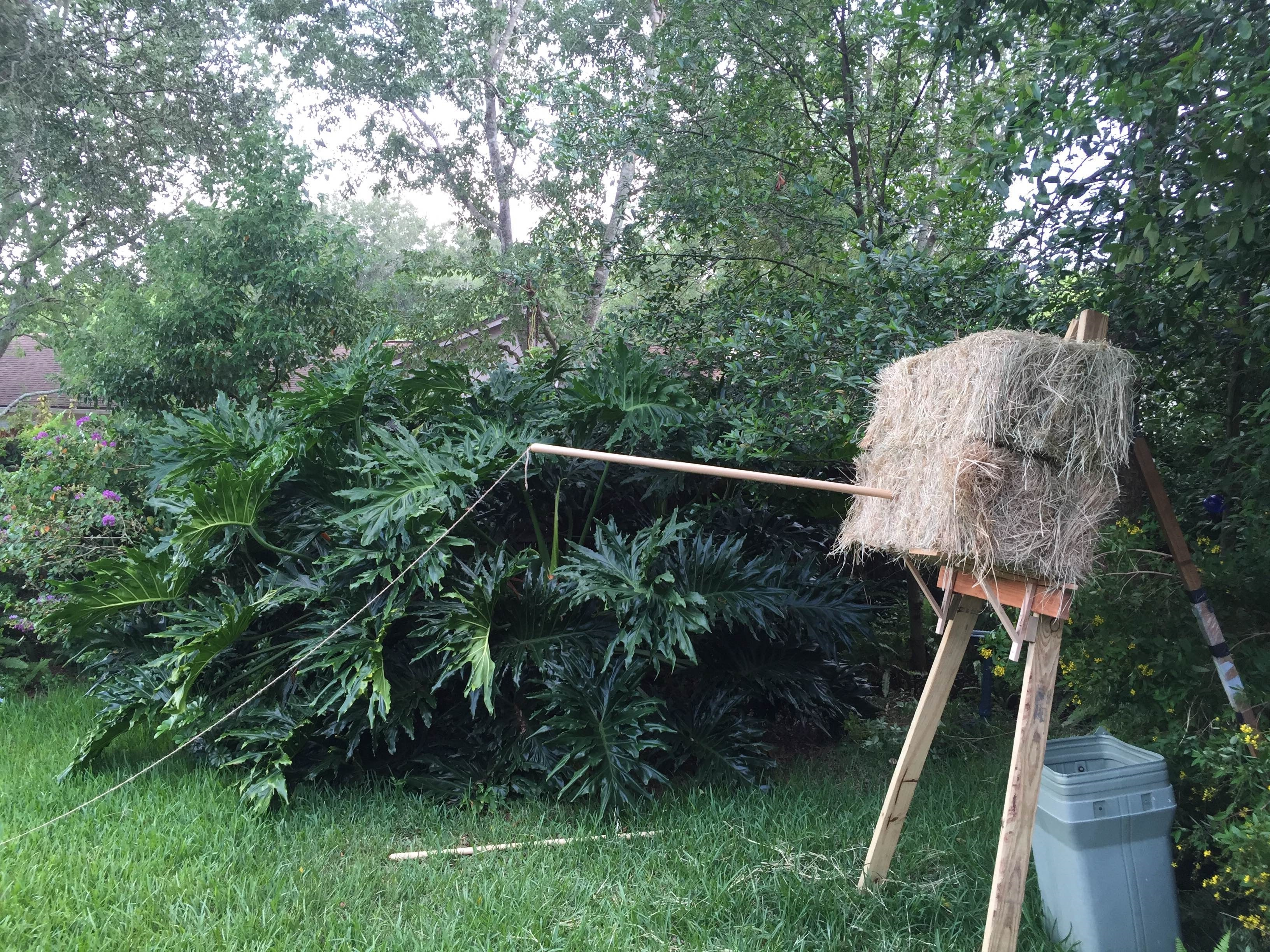 The backyard spear throw. This cost about $25 to make, and I never miss spear throws now!