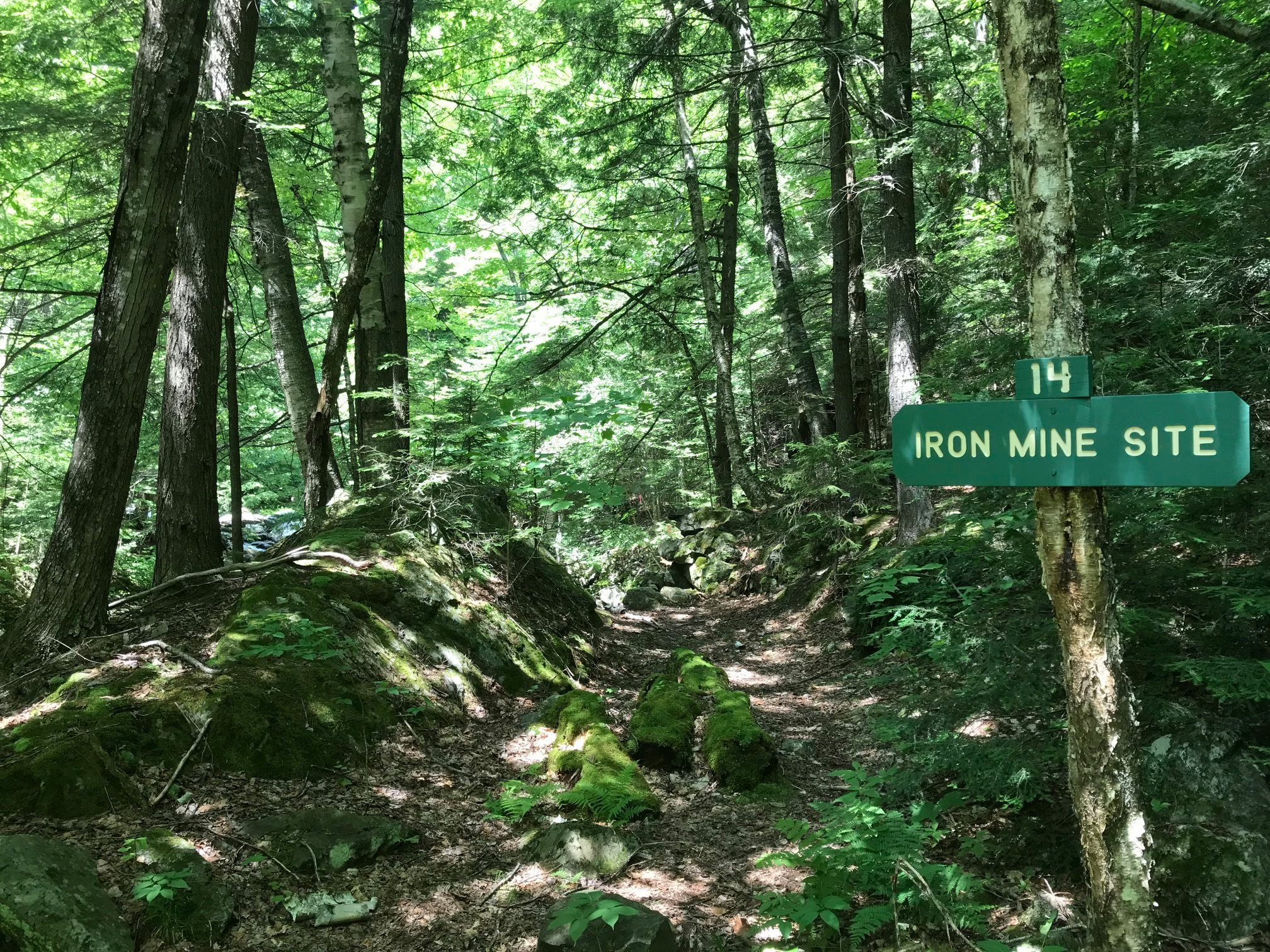 Iron Mine - one of the land nav checkpoints and a place where people had to brew mushroom tea