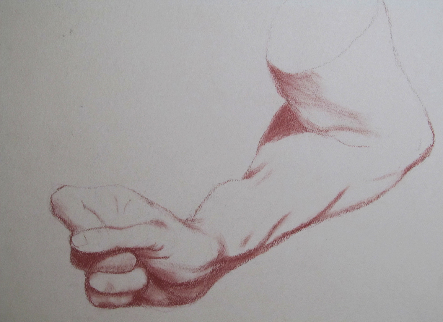 hand and forearm study