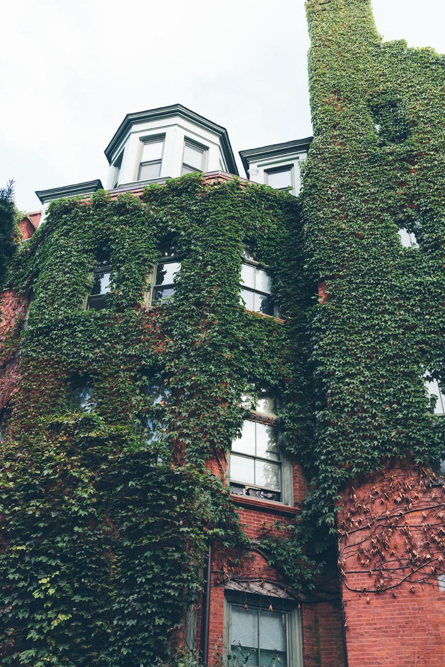 ROSE-BENNETT-NYC-WEDDING-BROOKLYN-CEREMONY-CYNTHIACHUNG-0059.jpg