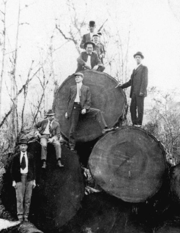 Woodstock Vintage Lumber History