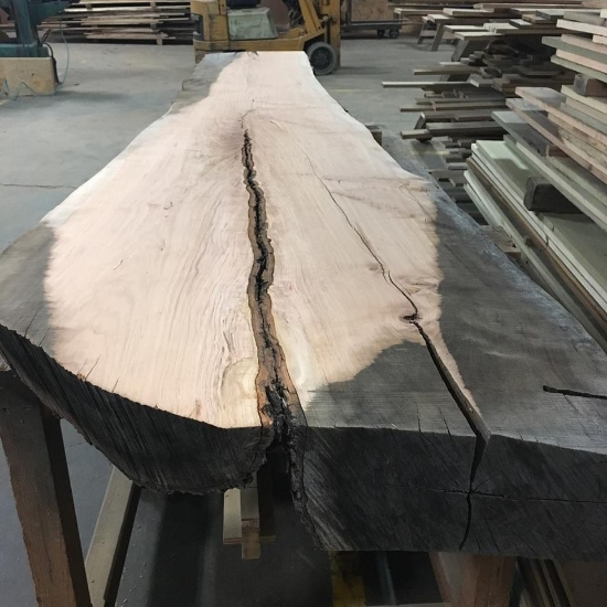 One of our live edge slabs, before being crafted into a mantel.