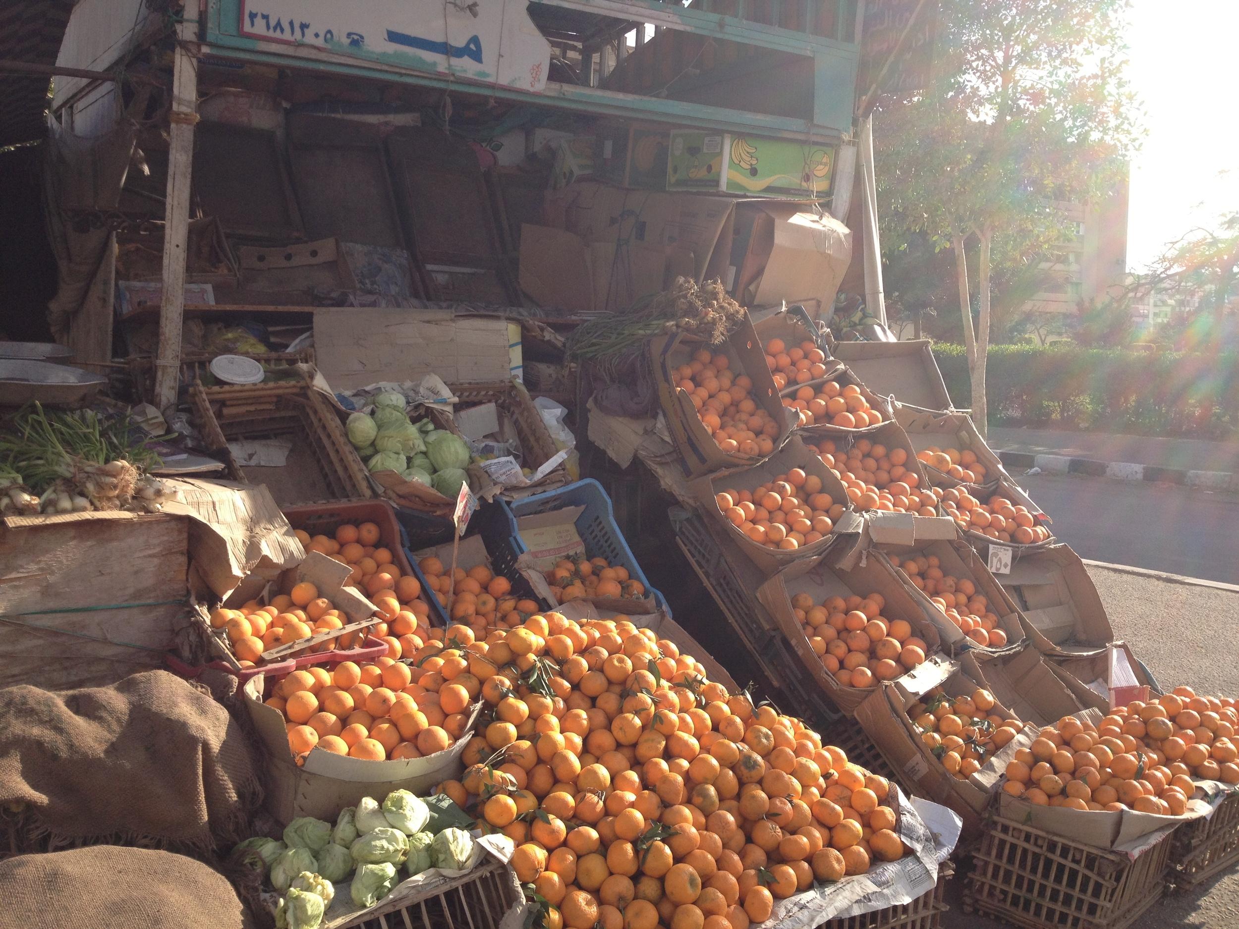 Oranges in Egypt!