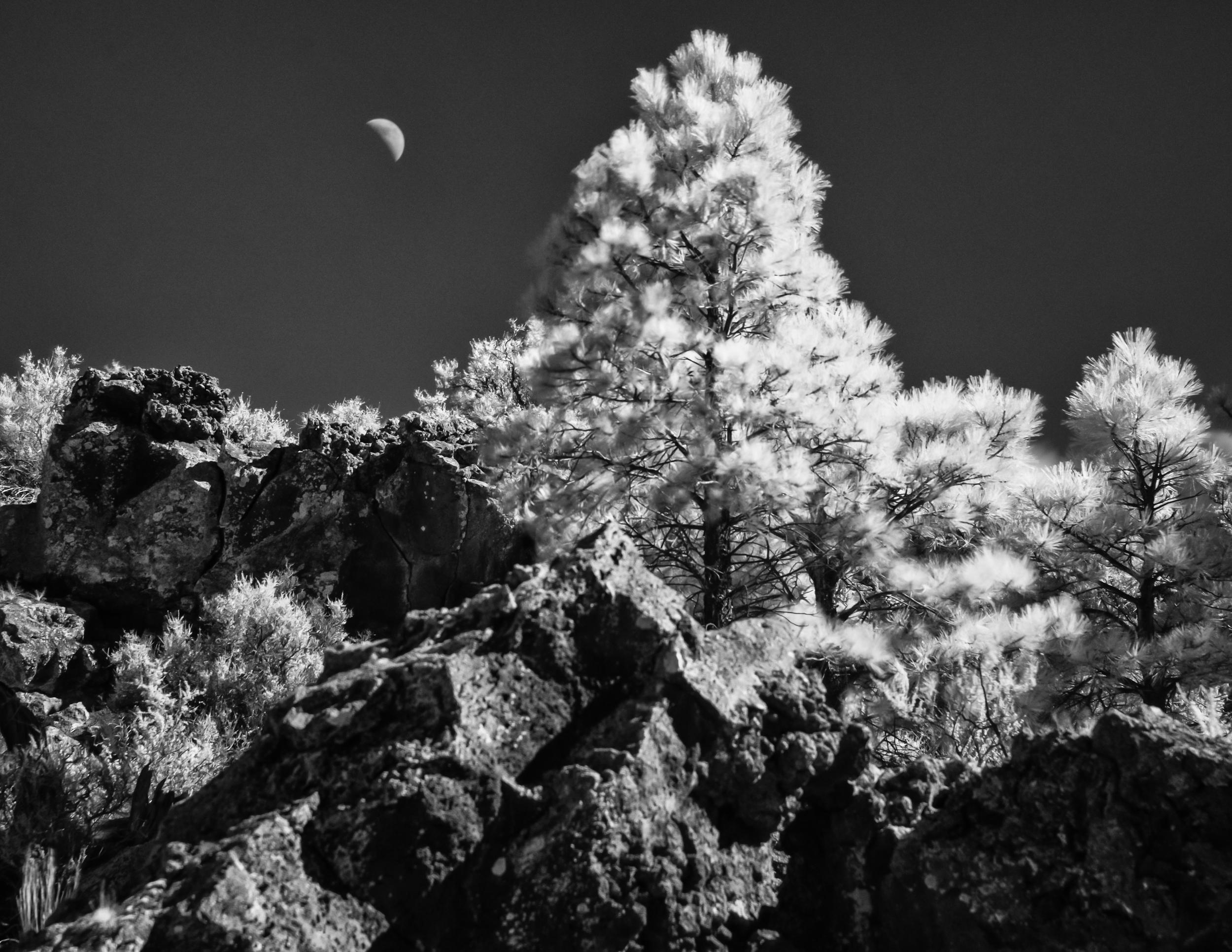 sunset_crater-DMS_5231-Edit.jpg