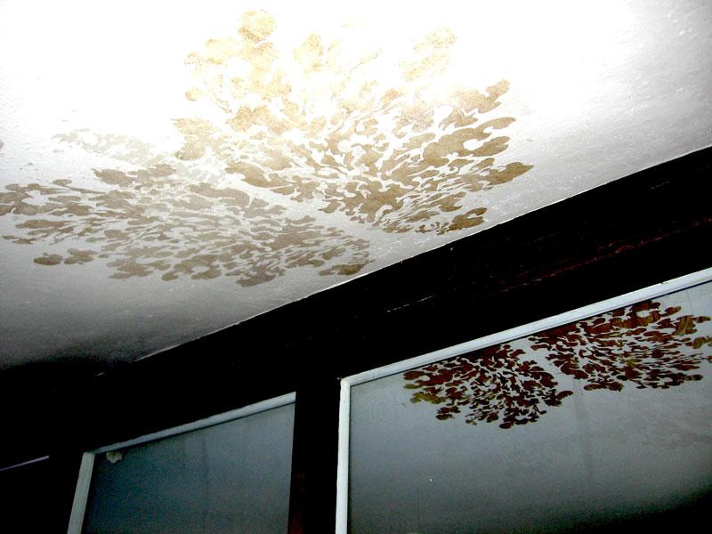 charlie-callahan-blood-oil-stencil-on-cieling-space-868.jpg