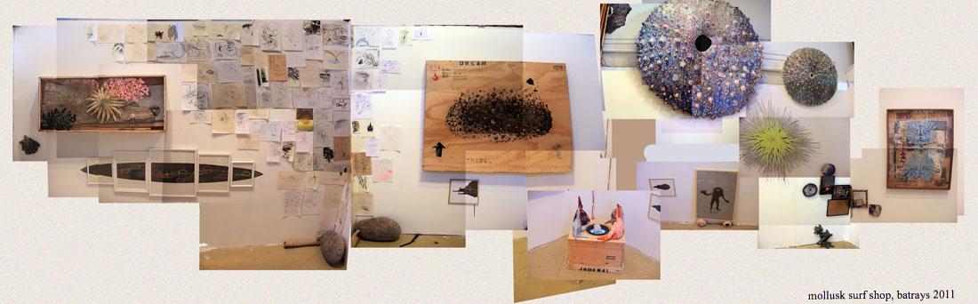 charlie-callahan-mollusk-surf-shop-installation.jpg