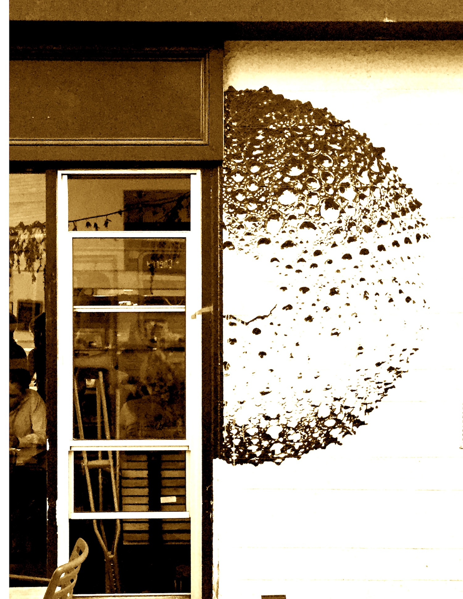 5. tartine urchin, acrylic on wall.JPG