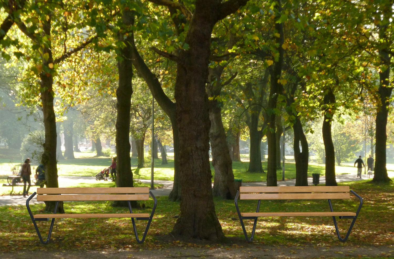 Rosenhill_Park2_Wood_01.jpg