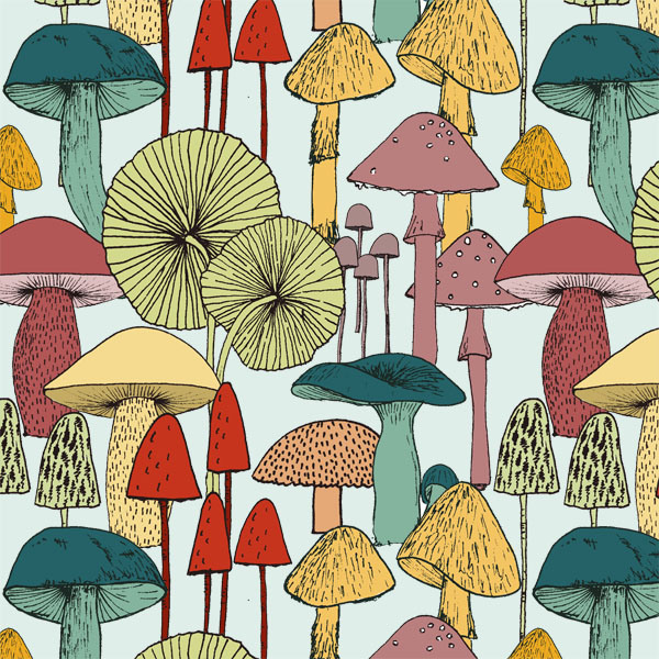 mushroomsclose.jpg