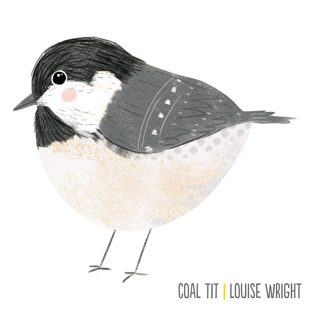 coal tit by louise wright