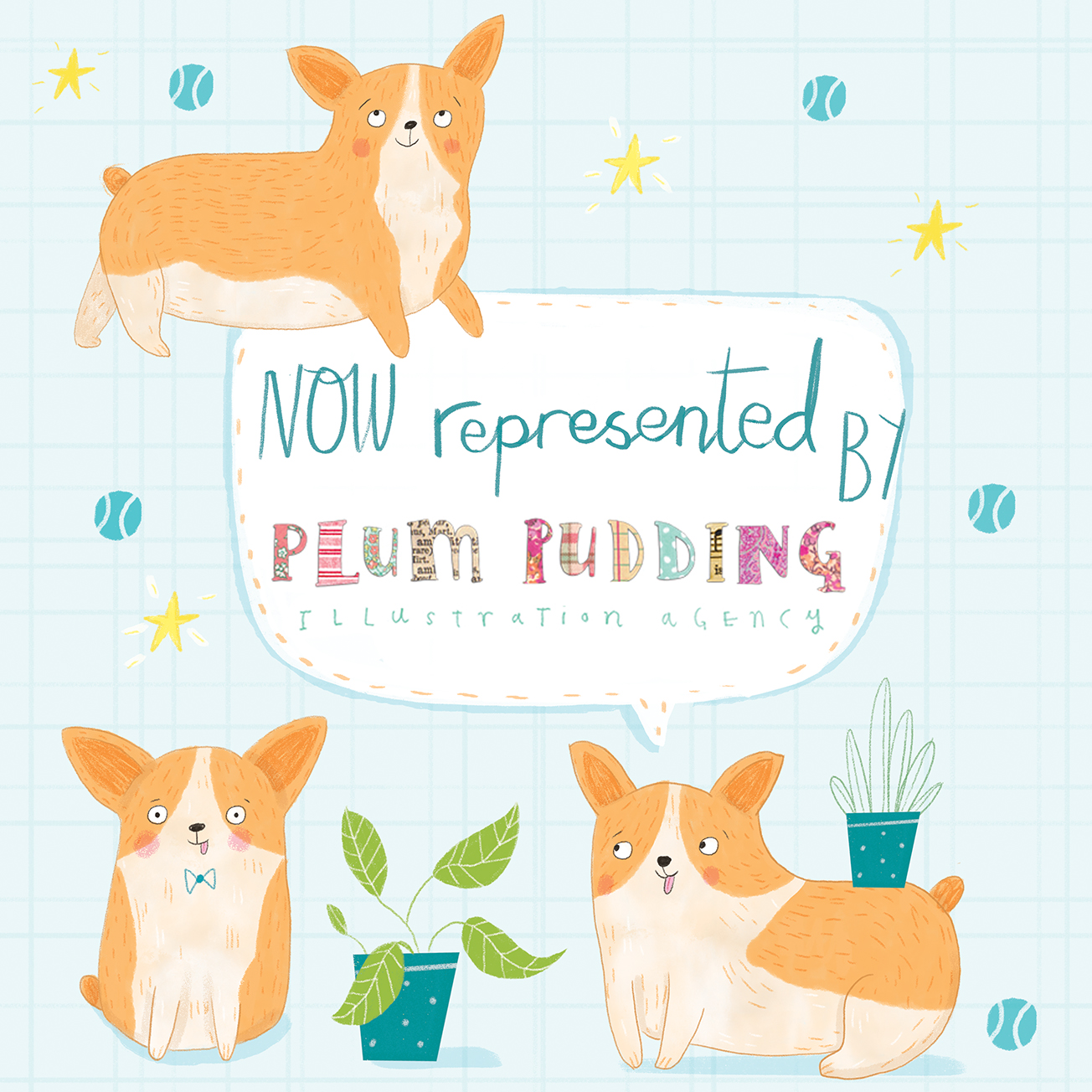 Corgi plum pudding announcement