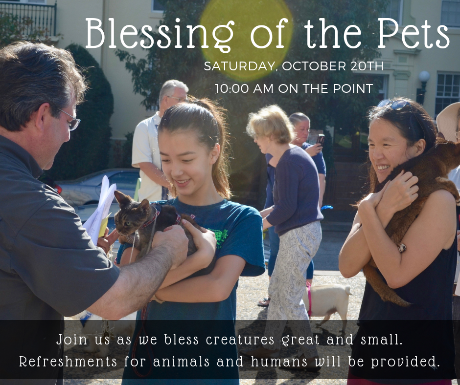 Bring your pet and join us on Saturday, October 20th at 10 am on The Point (corner of Charles and Greenway) as we offer a blessing on all of our creatures great and small. This event is open to the community and was a great success last year. Refreshments for humans and some of their animal companions will be provided. Please have your animal on a leash or in a container.