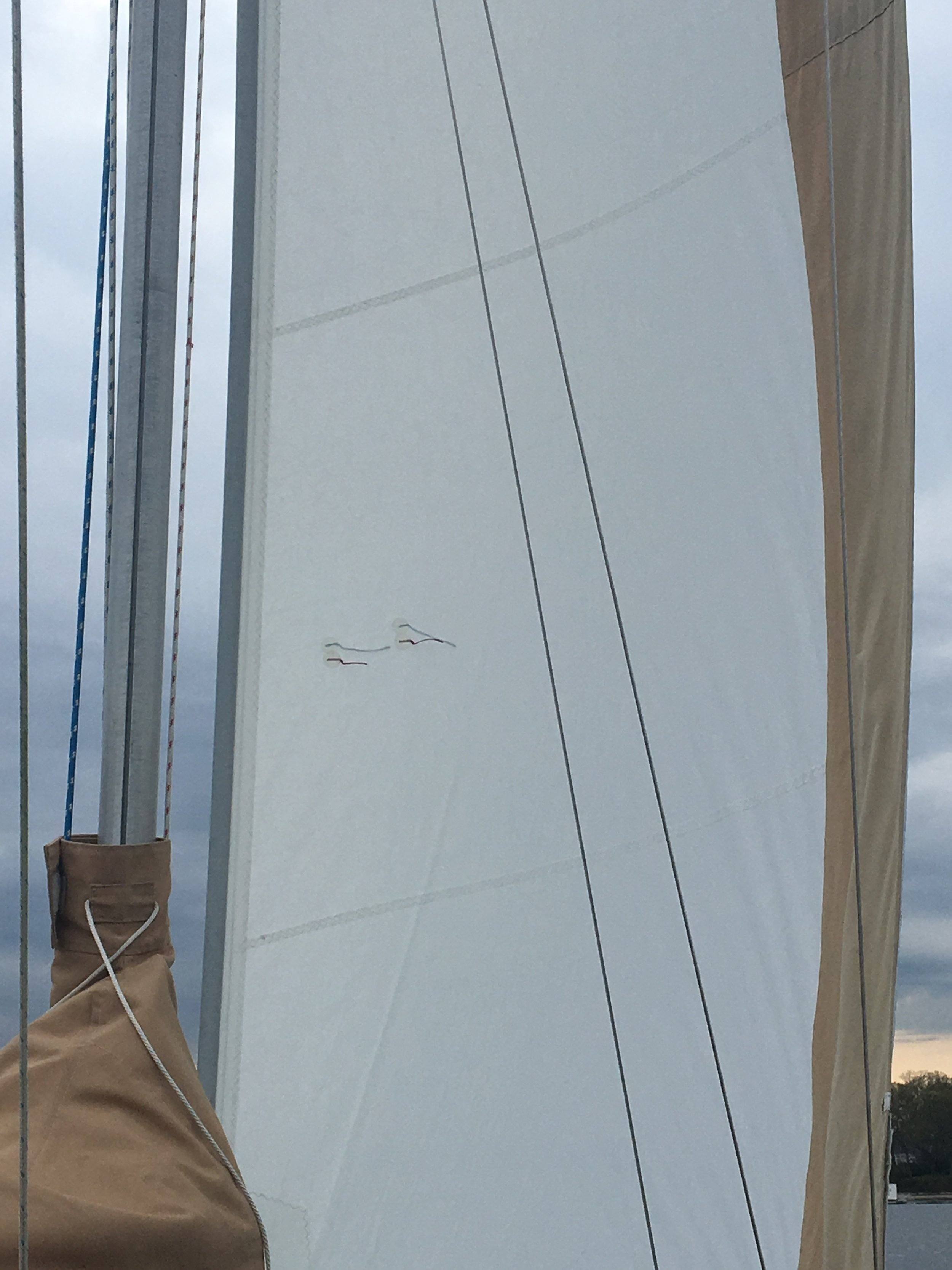 Sails in trim