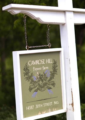 Camrose Hill Flower Farm is a beautiful wedding day venue located right here in Stillwater, MN.