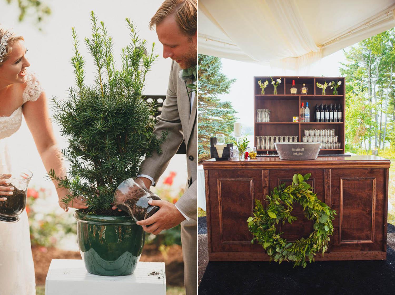 planting a tree at wedding