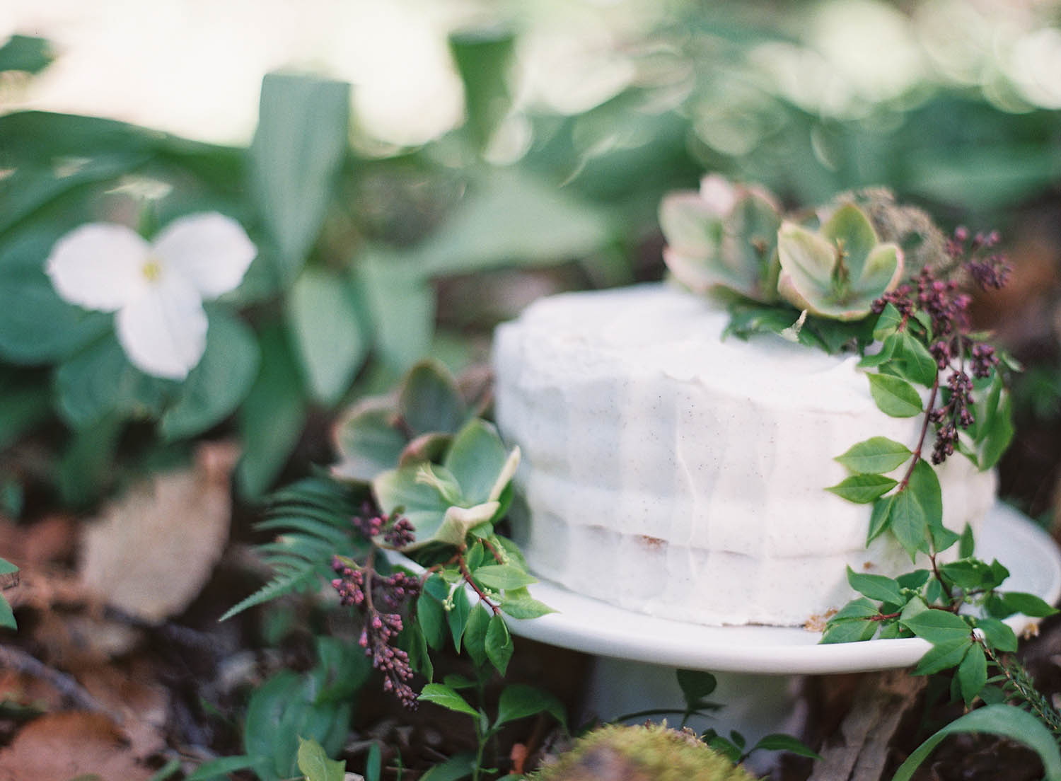 gorgeous natural woodland cake