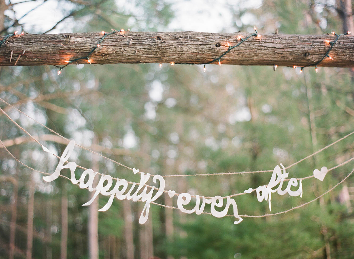 happily ever after paper cut banner