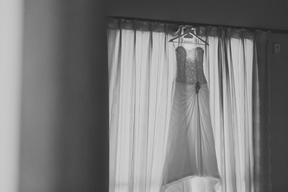 Wellington-wedding-photography_001.JPG